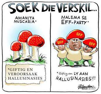 Juju .... Ek weet nie wat om te maak van hierdie man nie? Aan die een kant, as hy stemme van die ANC wen, versterk dit die DA. Te veel stemme, en ons land verval in anargie...kyk wat sê The Public News Hub vandag: These voters are jobless, disgruntled and disillusioned with the state of affairs in the country, 20 years post-independence and are the same people who Julius Malema was wildly popular with as the President of the Youth League. Young people make a difference when they vote, the historical election of Barack Obama being an excellent example of this.